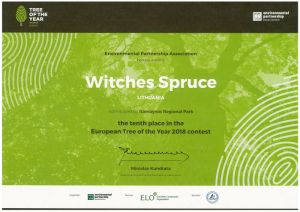 Witches spruce 10th place in ETY 2018 300